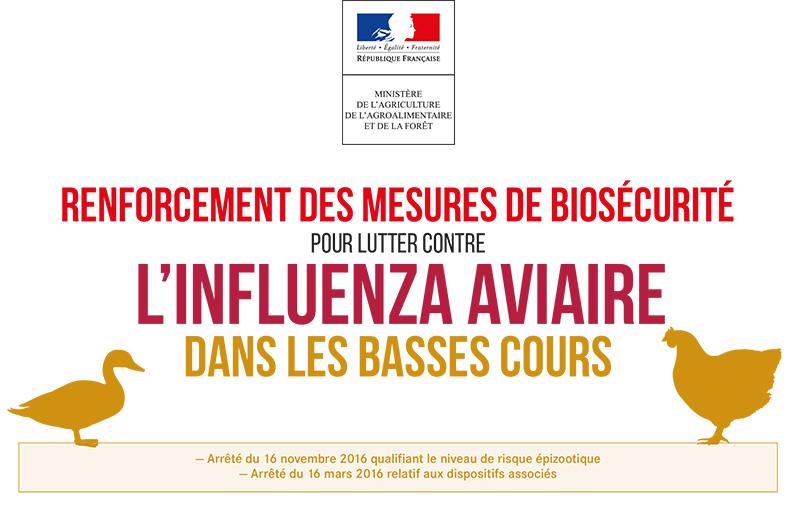 Informations Pour Lutter Contre La Grippe Aviaire